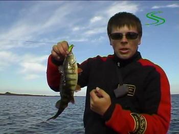 спиннинг твичинг рыбалка фильм скачать шанин jackall минноу щука