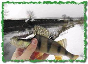 рыбалка на пехорке видео
